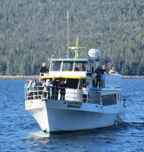 Boatloads of tourists came by the necropsy site, offering the visitors a chance for a unique Alaska photograph.