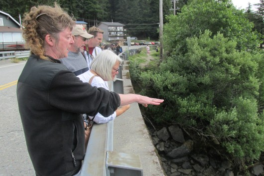Sourdough Tours guide Laurie Weller shows a group of tourists the view from Herring Cove.