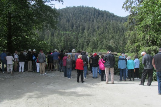 Tourists view the creek at Herring Cove from a public area on Power House Road.
