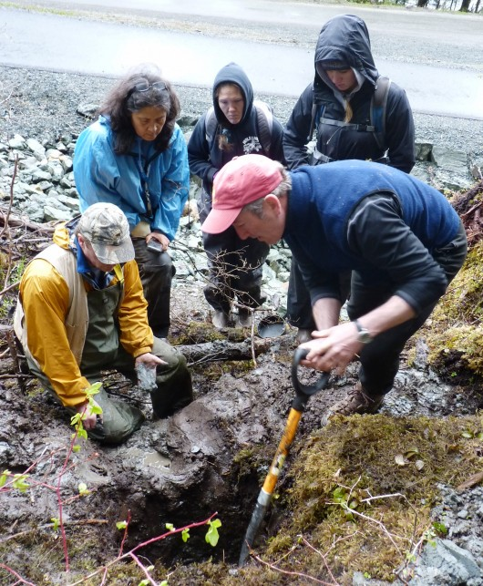Shoreline search boosts evidence of early habitation