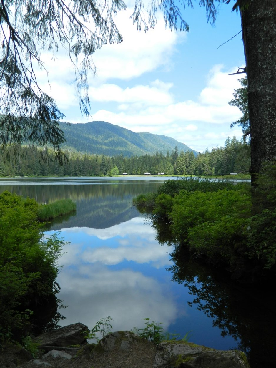 New campfire rules for the Ward Lake area