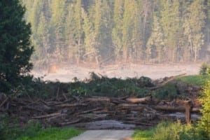Early tests show B.C. tailings spill water 'safe'