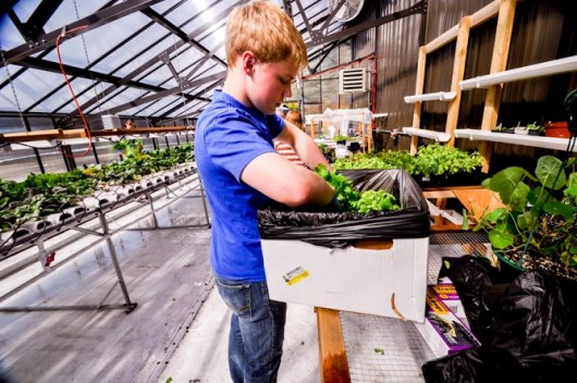 Student greenhouses prompt Thorne Bay restaurant purchase
