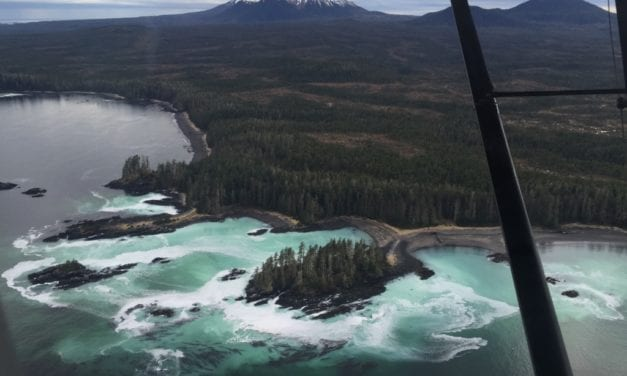 AK: Fishing for herring from the sky