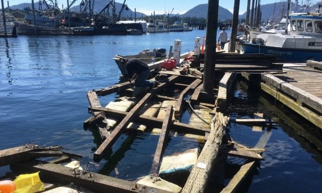 Seiner hits, damages Thomas Basin Harbor float