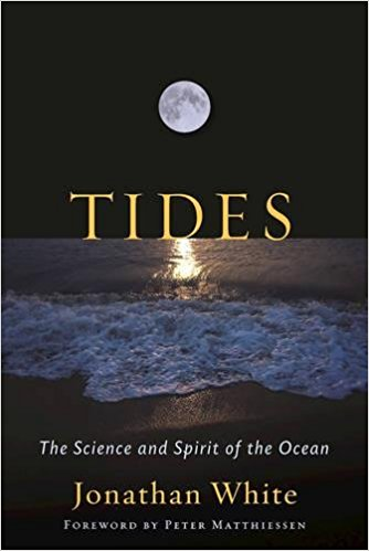 Author explores beauty and science of tides