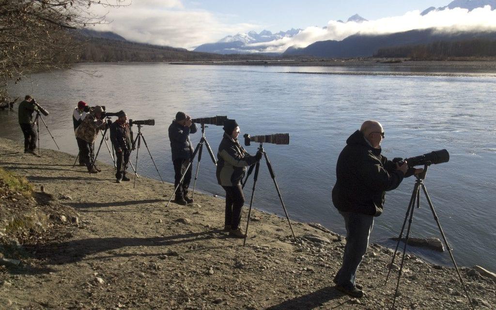 Fall eagle forecast on the rise