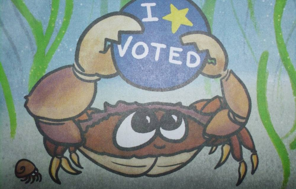 Election Day information and links