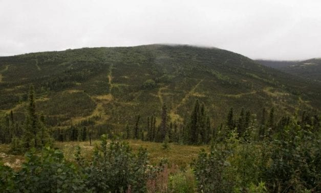 Calista shareholders voice dissent over Donlin Mine in letter to board