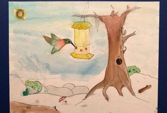 Hummingbird Festival Art Show winners announced