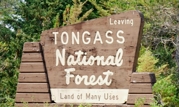 Murkowski now supports a 'complete exemption' for Tongass from Roadless Rule