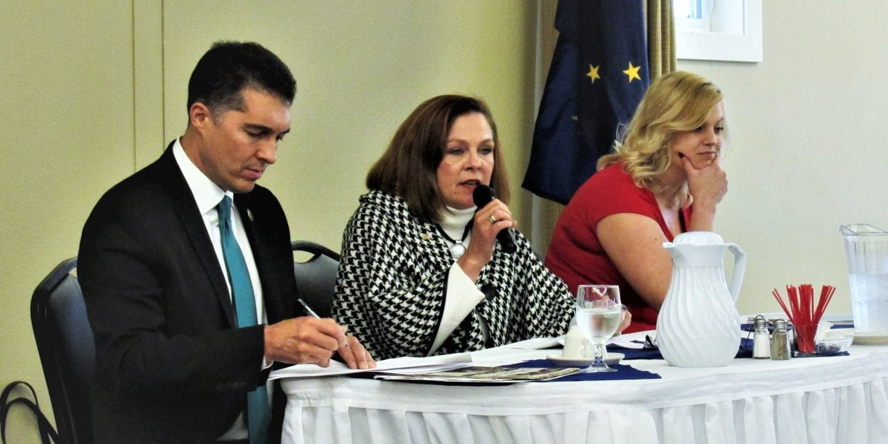 Borough mayoral candidates sound off during chamber forum