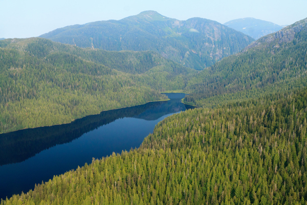 Forest Service to hold meetings on Tongass Roadless Rule rollback in southern Southeast