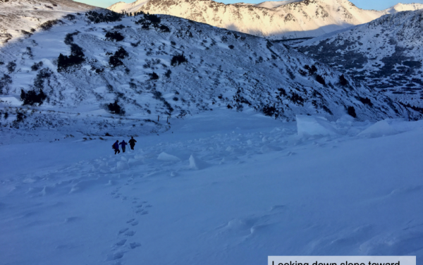 Buried an hour, hiker survives Anchorage avalanche after stranger spots legs